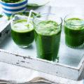 content_classic-green-juice-lgh-006b10e5-9d94-4f16-bd85-c50e0ba56a2e-0-1400x919__econet_ru